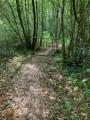 Une passerelle pour franchir le ruisseau