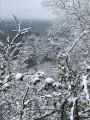 Une vue hivernale sur la Garonne