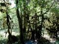 Vallée du Dadou