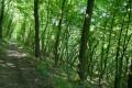 Vallée du Rossand