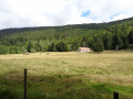 Le vallon du Fossat et Pierre-sur-Haute au départ du Col du Béal