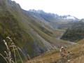 Vallon du ruisseau de Valbuche