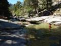 Vasques sur le Golo vers 1017 m