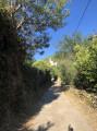 Le sentier des douaniers au départ de Patrimonio