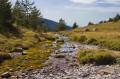 Vers le lac du Crachet