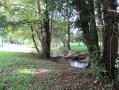 Vert: petit parc