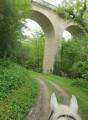 Le petit viaduc de Fromental aux Menoux