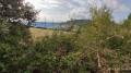 Entre les piles du viaduc de Millau
