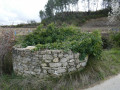 Vieux puits envahi par le lierre
