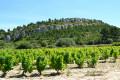 Sentier des vignerons et boucle panoramique à Saint-Julien-les-Martigues