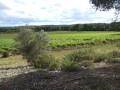 L'ancienne voie romaine de Pélissane entre vignes et garrigues