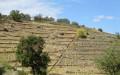 Anciennes parcelles de vigne