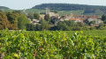 Village de Touches et son vignoble