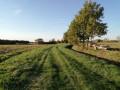 La ronde des vignes à Villematier