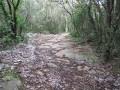 Boucle d'Aigues-Vives par le Chemin de la Bouissonade (Route Romaine)