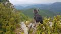 Vue de la lance sur le massif de la forêt de Saou