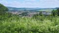 Vue de Pagny-sur-Moselle