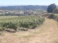 Villelongue-d'Aude