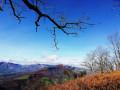 Montée au Pic d'Arradoy par les vignes