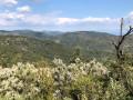 Sentier du Deffend au Nord de Sainte-Maxime