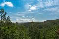 Le Bois de Jamot à Espeluche