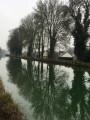 Vue du canal du Loing vers l'écluse de Bagneaux