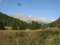 Vue du plateau et des montagnes au fond.