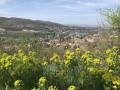 Sur les hauteurs de Fleurieu-sur-Saône