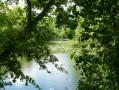Vue sur l'étang des Basses Godernes