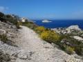 Le Sommet de Marseilleveyre par le Vallon de la Mounine