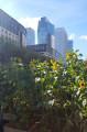 Vue sur la Défense depuis le métro Esplanade de la Défense