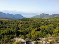 Monte Stellu par Olmeta di Capicorsu