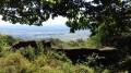 Vue sur la plaine d'Alsace