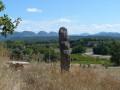 Pays de Grignan - Les truffières et les vignobles