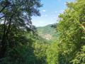 Vue sur la vallée de l'Albarine