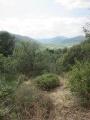 vue sur la vallée de l'Eyrieux
