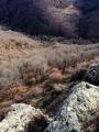 La Cabane du Tailleur de Pierres entre basalte et granite
