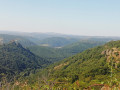 Vue sur le château de Léotoing et la vallée de l'Alagnon