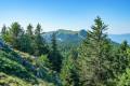 De Menthières au Gralet parcours de crêtes en forêt