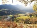 Vue sur le Gave de Pau et la forêt de Très Croutz