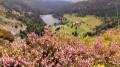 Circuit des quatre lacs dans les Vosges