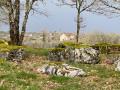Parcours découverte du petit patrimoine d'Espédaillac et arbres du Causse