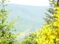 Vue sur les hauteurs dela vallée de la Vocance