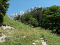 Boucle de la Cabane de Bellefond depuis Saint-Pierre-de-Chartreuse
