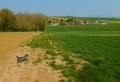 Vue sur Montarlot