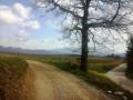Le Plateau de Venterol